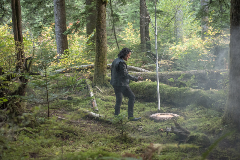 "Review of Twin Peaks 3×17 and 3×18 by ""El pájaro burlón"""